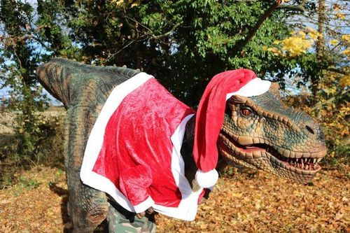 Santa-saurus- Standard Visit- 19th and 20th Dec from 10-3:30pm