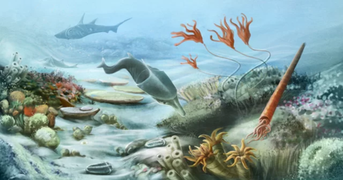 Jurassic Sea creatures/ Under the sea workshop-13th August-11am & 2pm