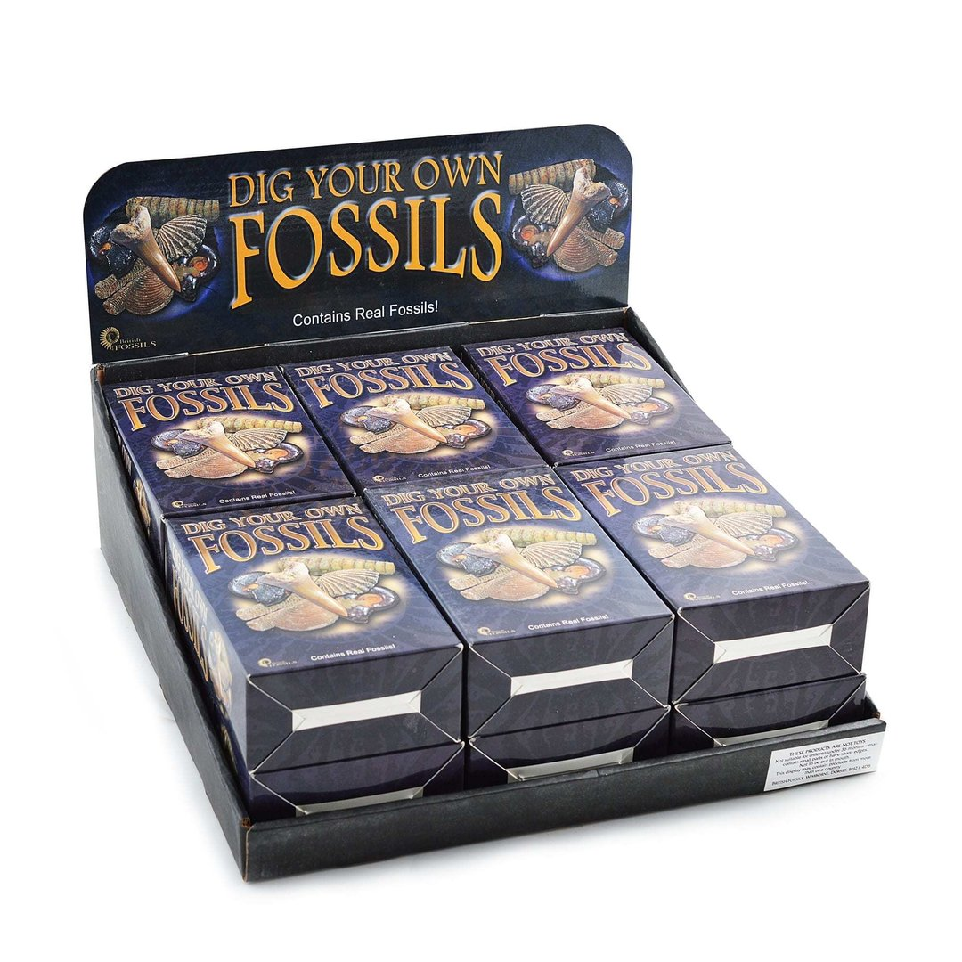 Dig Your Own Fossil Pack