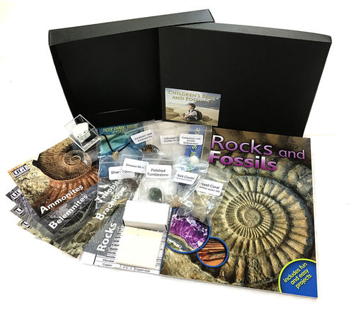 Childrens Rock and Fossil Set