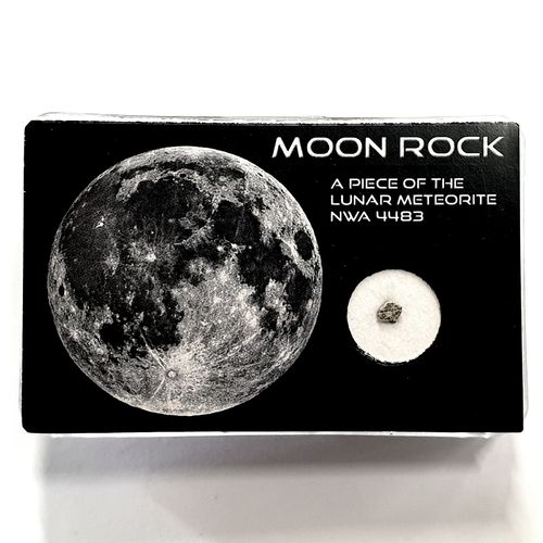 Lunar Meteorite (Moon Rock)